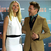 Robert Downey Jr. and Gwyneth Paltrow at the 'Iron Man 3' photocall in Munich 146514