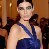 Jessica Pare at the 2013 Costume Institute Gala  149237
