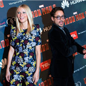 Robert Downey Jr. and Gwyneth Paltrow at the 'Iron Man 3' French Premiere photocall in Paris 146621