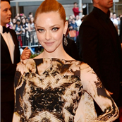 Amanda Seyfried at the 2013 Costume Institute Gala 149487