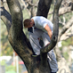 Kellan Lutz climbs a tree to read his book 129582